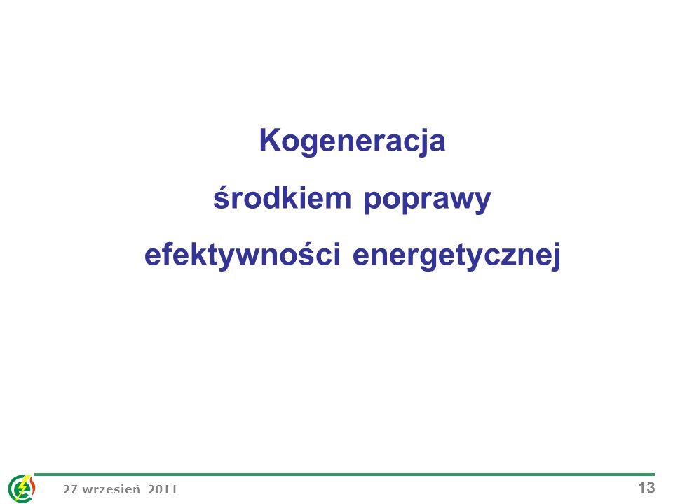 Kogeneracja środkiem poprawy efektywności energetycznej