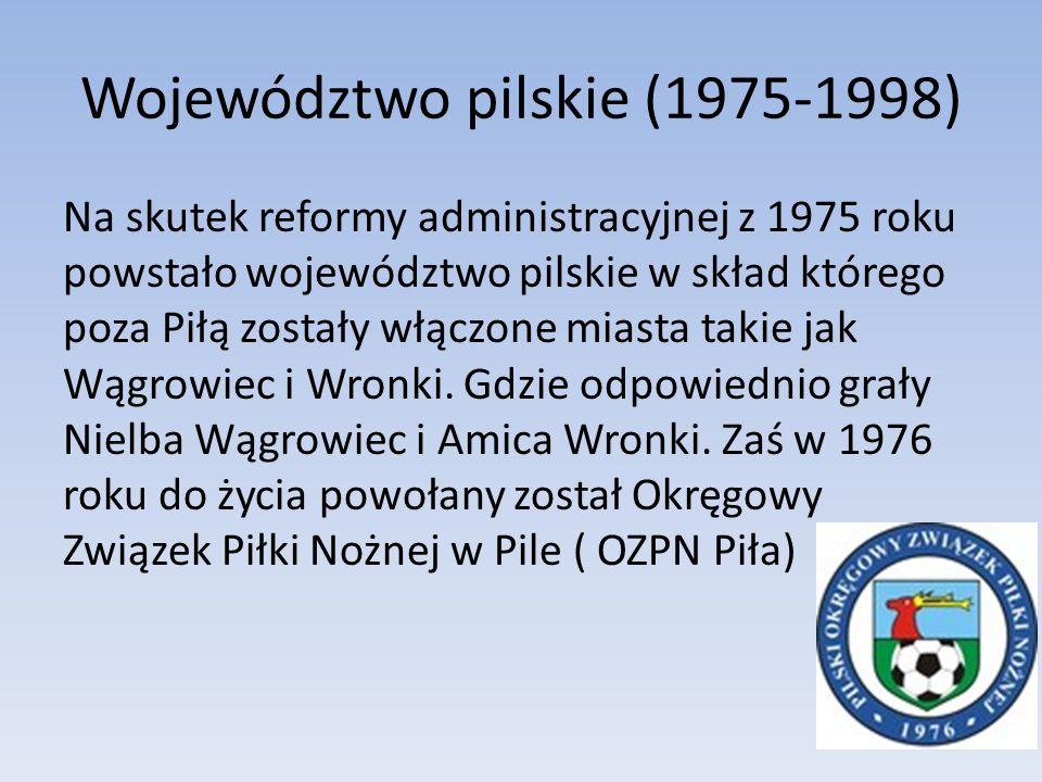 Województwo pilskie (1975-1998)