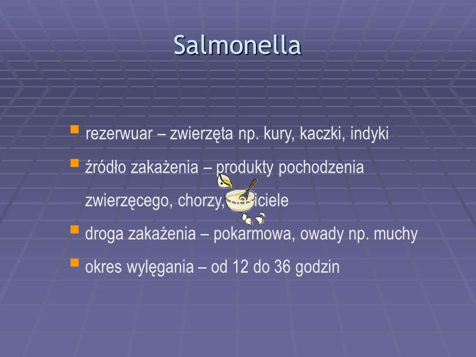 Salmonella rezerwuar – zwierzęta np. kury, kaczki, indyki