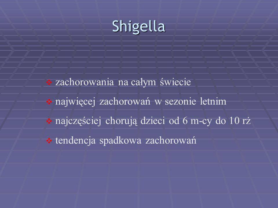 Shigella zachorowania na całym świecie