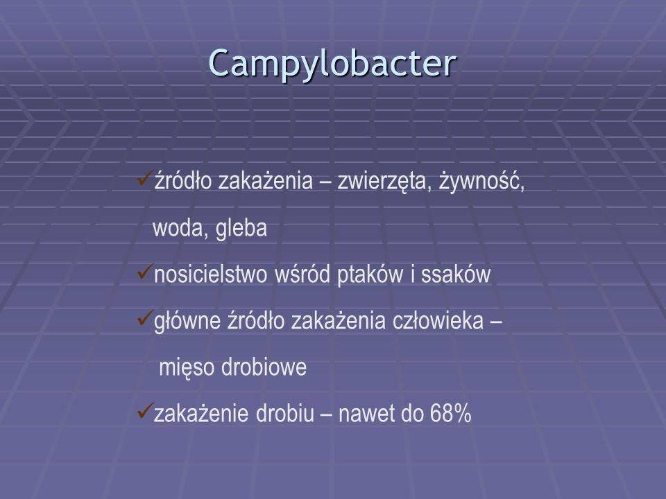 Campylobacter źródło zakażenia – zwierzęta, żywność, woda, gleba