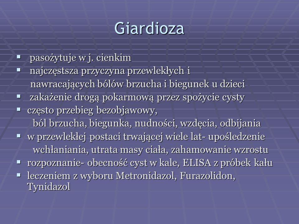 Giardioza pasożytuje w j. cienkim najczęstsza przyczyna przewlekłych i
