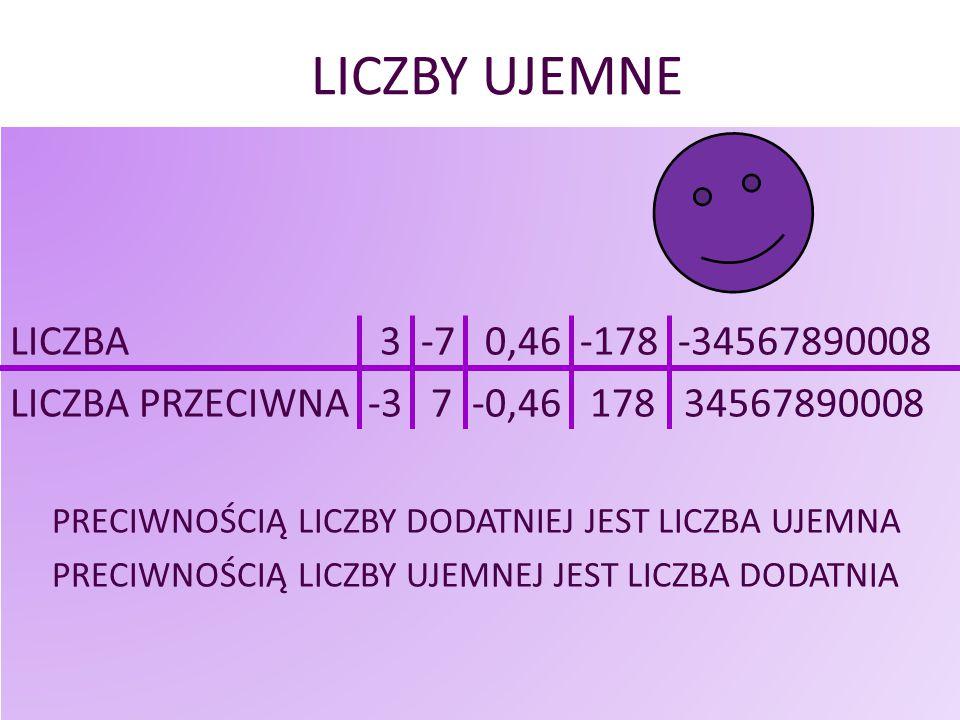 LICZBY UJEMNE LICZBA 3 -7 0,46 -178 -34567890008