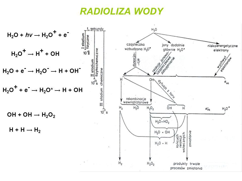 RADIOLIZA WODY H2O + hv → H2O+ + e- H2O+ → H+ + OH