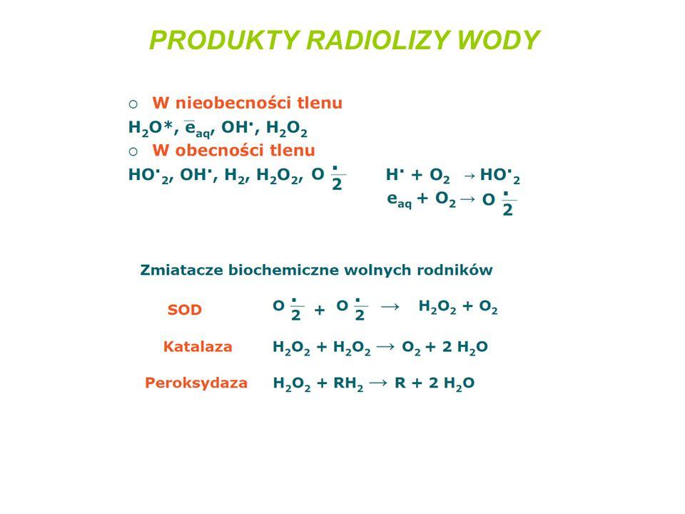 PRODUKTY RADIOLIZY WODY