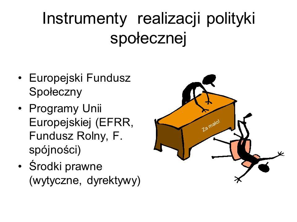 Instrumenty realizacji polityki społecznej