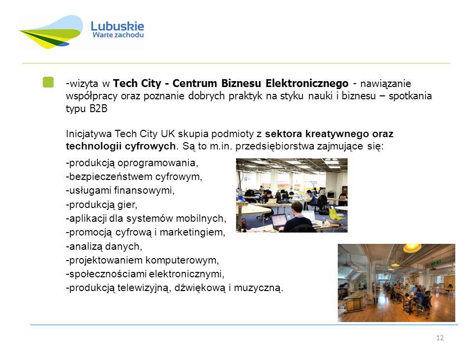 wizyta w Tech City - Centrum Biznesu Elektronicznego - nawiązanie współpracy oraz poznanie dobrych praktyk na styku nauki i biznesu – spotkania typu B2B