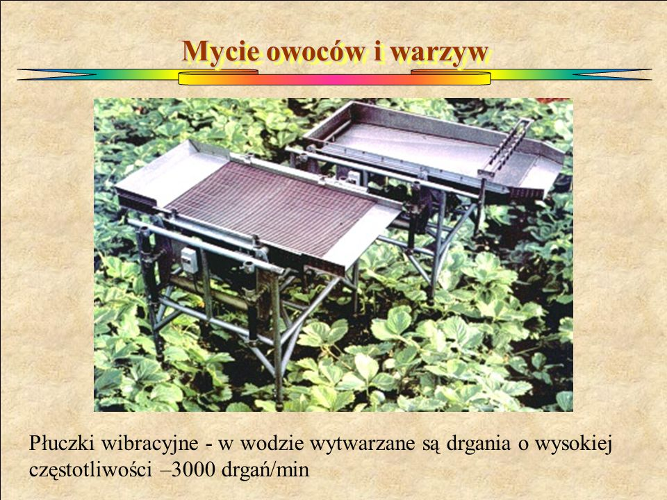 Mycie owoców i warzyw Płuczki wibracyjne - w wodzie wytwarzane są drgania o wysokiej częstotliwości –3000 drgań/min.