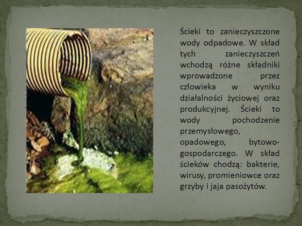 Ścieki to zanieczyszczone wody odpadowe