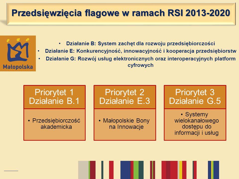 Przedsięwzięcia flagowe w ramach RSI 2013-2020