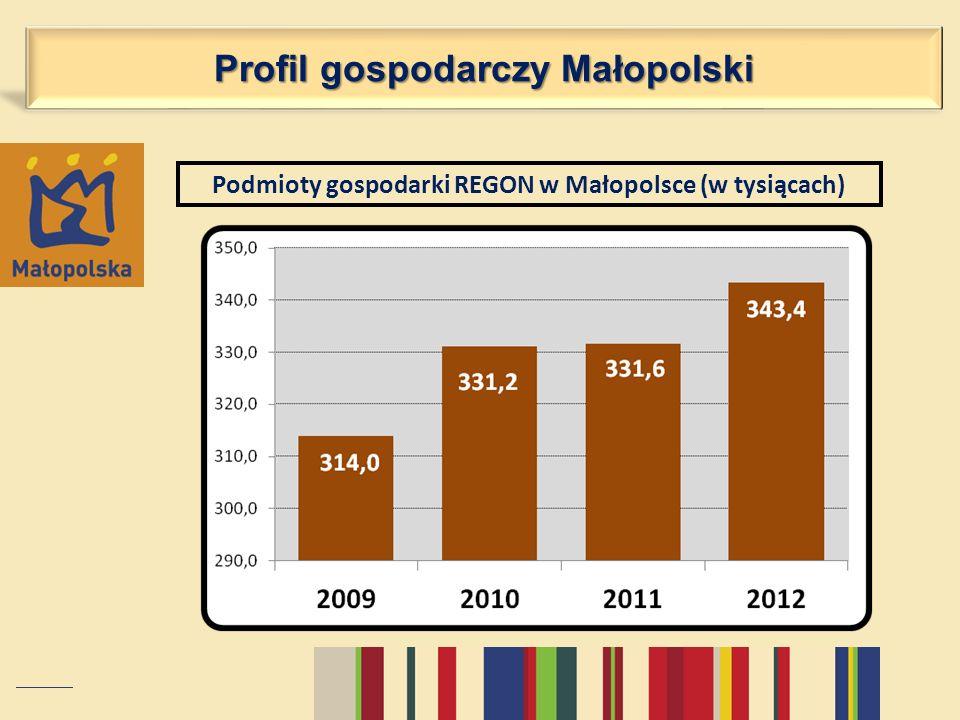 Profil gospodarczy Małopolski