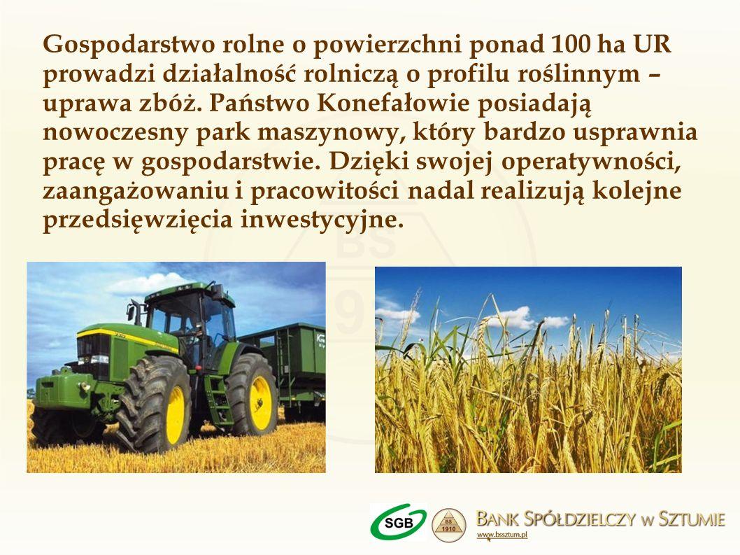 Gospodarstwo rolne o powierzchni ponad 100 ha UR prowadzi działalność rolniczą o profilu roślinnym – uprawa zbóż.
