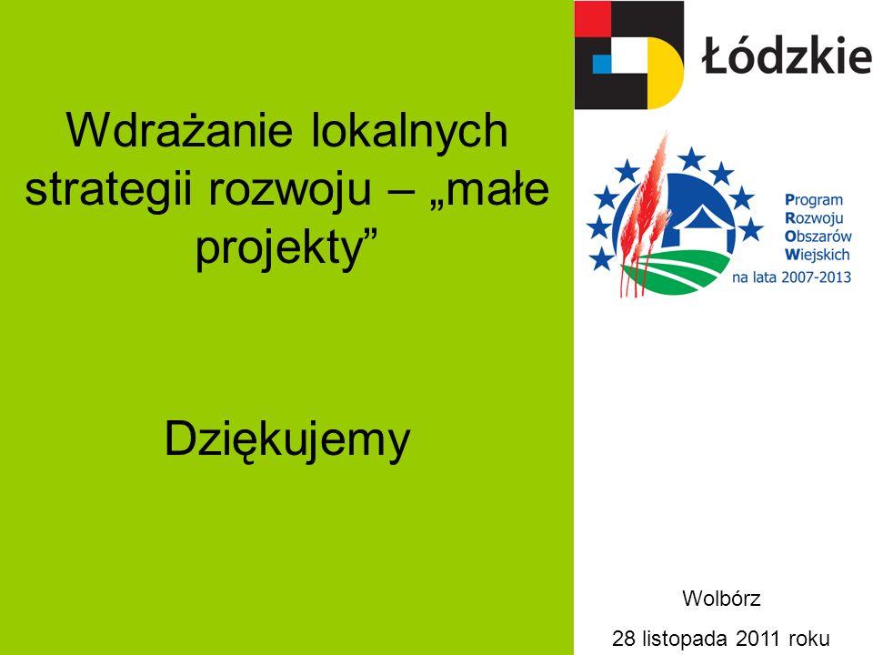 """Wdrażanie lokalnych strategii rozwoju – """"małe projekty"""