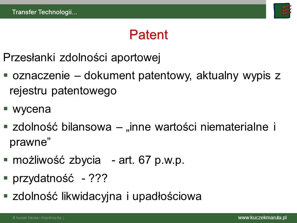 Patent Przesłanki zdolności aportowej