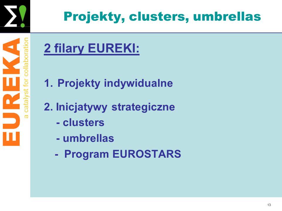 Projekty, clusters, umbrellas