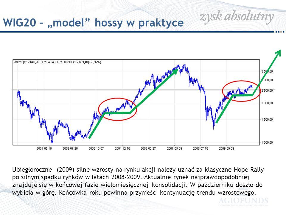 """WIG20 – """"model hossy w praktyce"""