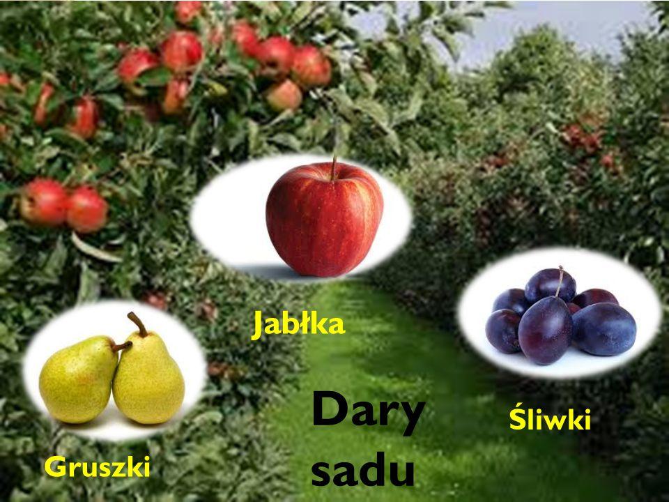 Dary sadu Jabłka Dary sadu Śliwki Gruszki