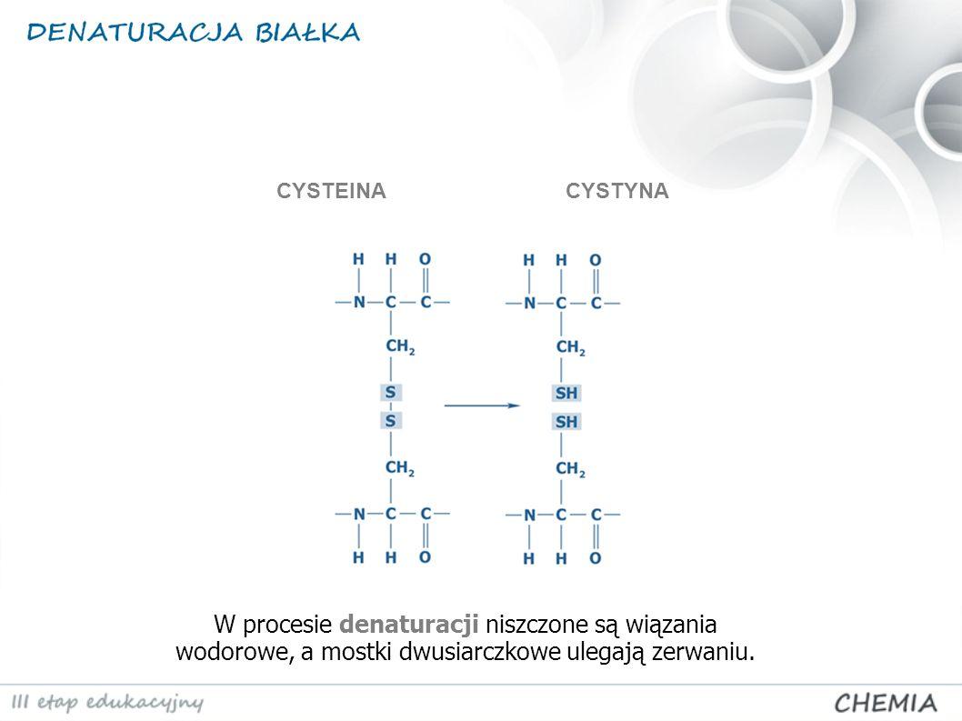 CYSTEINA CYSTYNA.