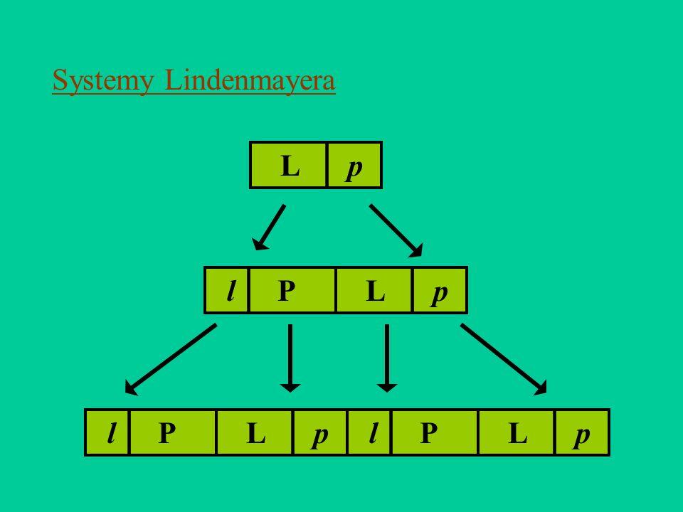 Systemy Lindenmayera L | p l | P L | p l | P L | p l | P L | p