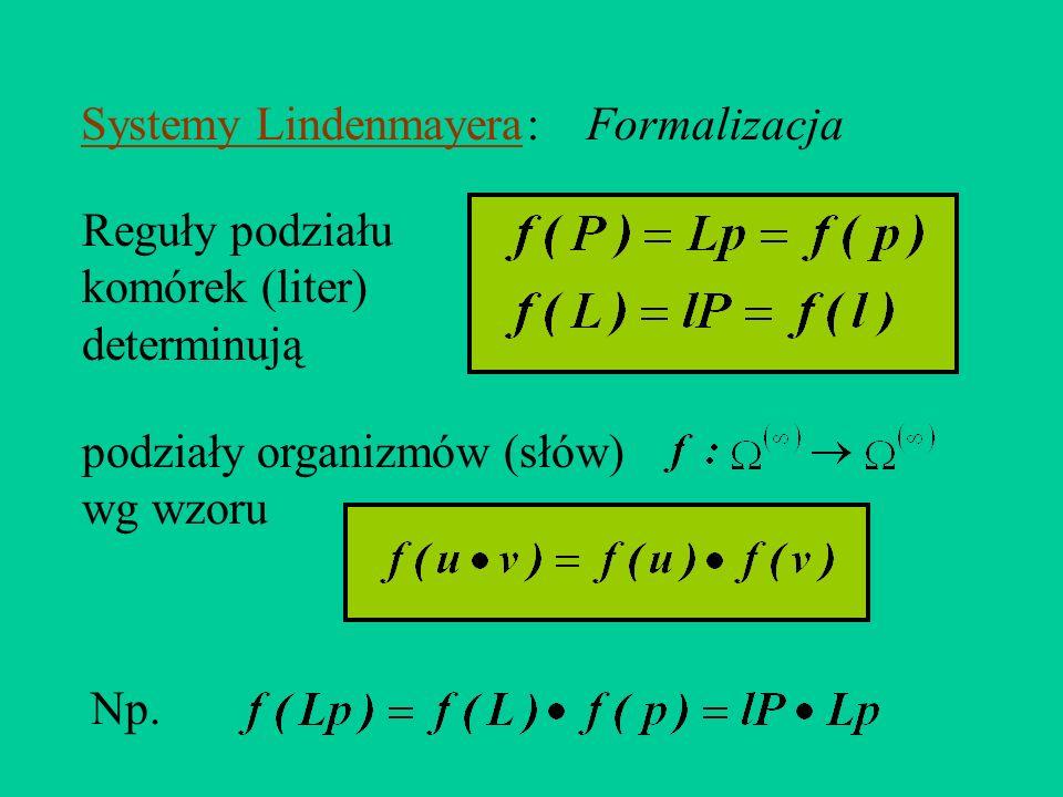 Systemy Lindenmayera : Formalizacja. Reguły podziału komórek (liter) determinują. podziały organizmów (słów)