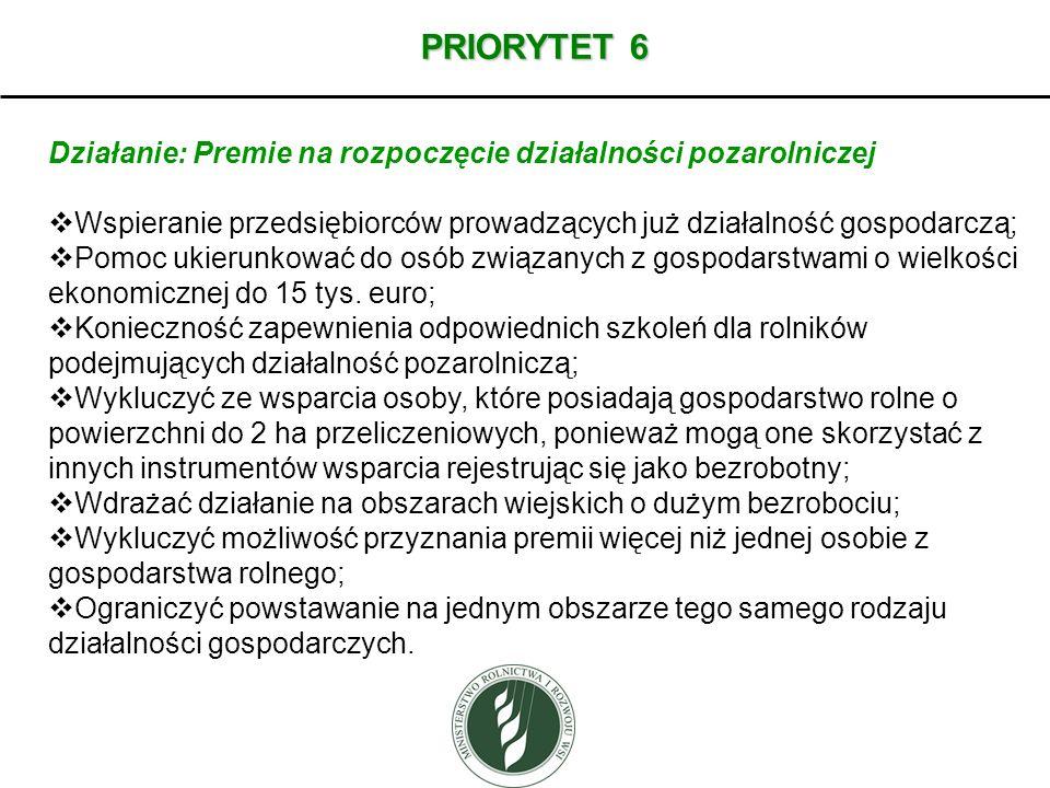 PRIORYTET 6 Działanie: Premie na rozpoczęcie działalności pozarolniczej. Wspieranie przedsiębiorców prowadzących już działalność gospodarczą;