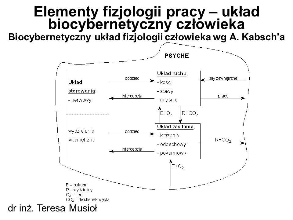 Elementy fizjologii pracy – układ biocybernetyczny człowieka
