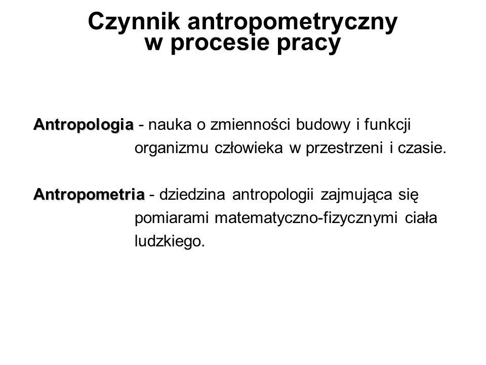 Czynnik antropometryczny w procesie pracy