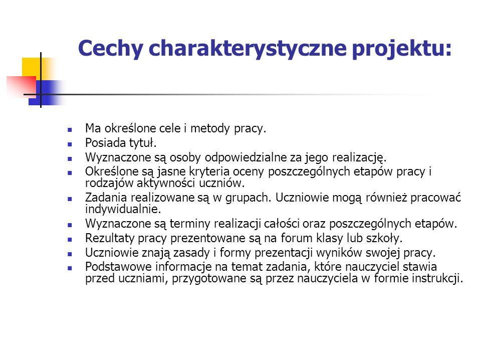 Cechy charakterystyczne projektu: