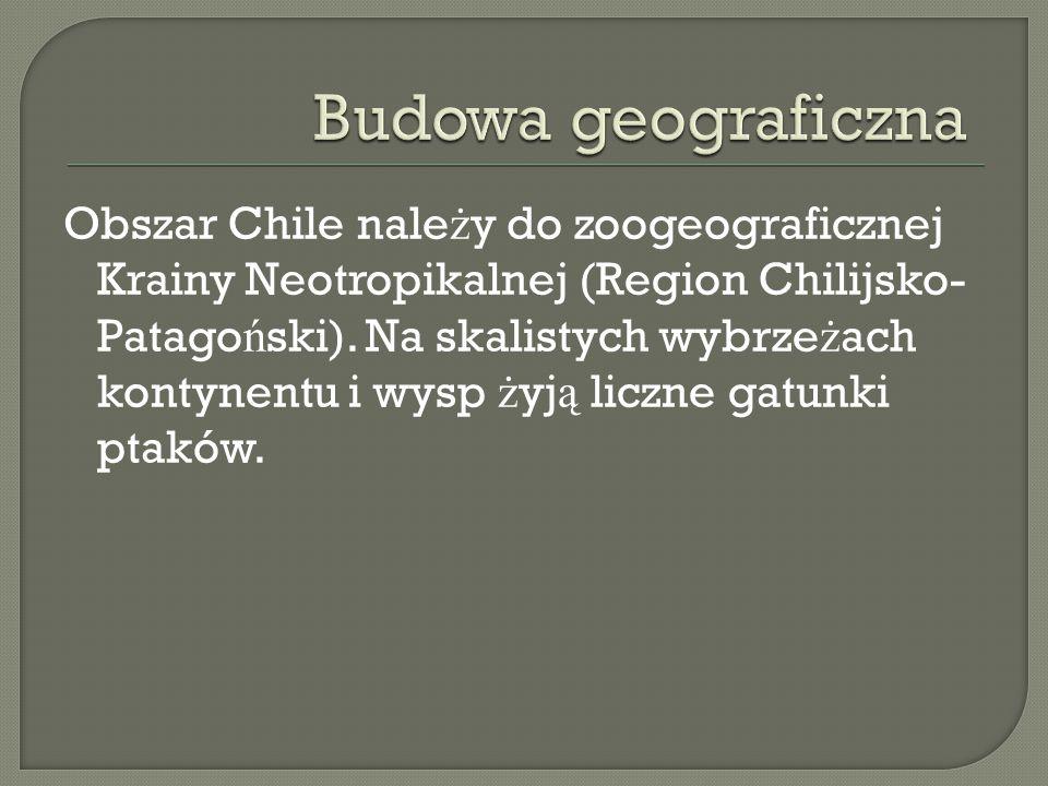 Budowa geograficzna