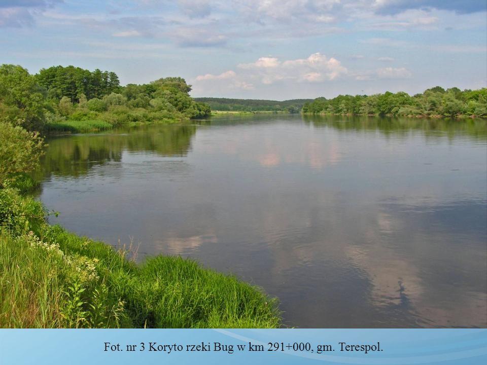 Fot. nr 3 Koryto rzeki Bug w km 291+000, gm. Terespol.