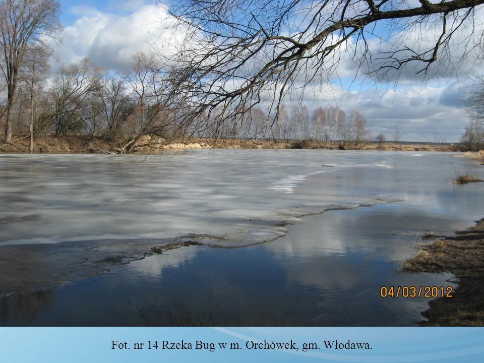 Fot. nr 14 Rzeka Bug w m. Orchówek, gm. Włodawa.