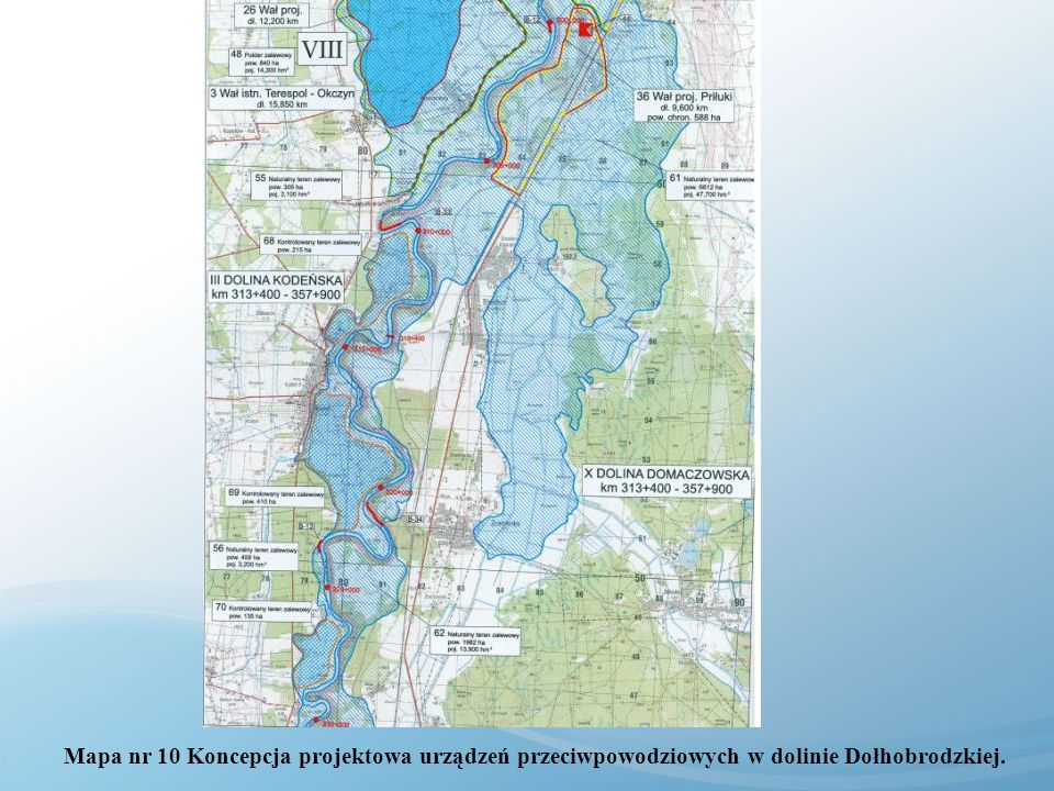 Mapa nr 10 Koncepcja projektowa urządzeń przeciwpowodziowych w dolinie Dołhobrodzkiej.