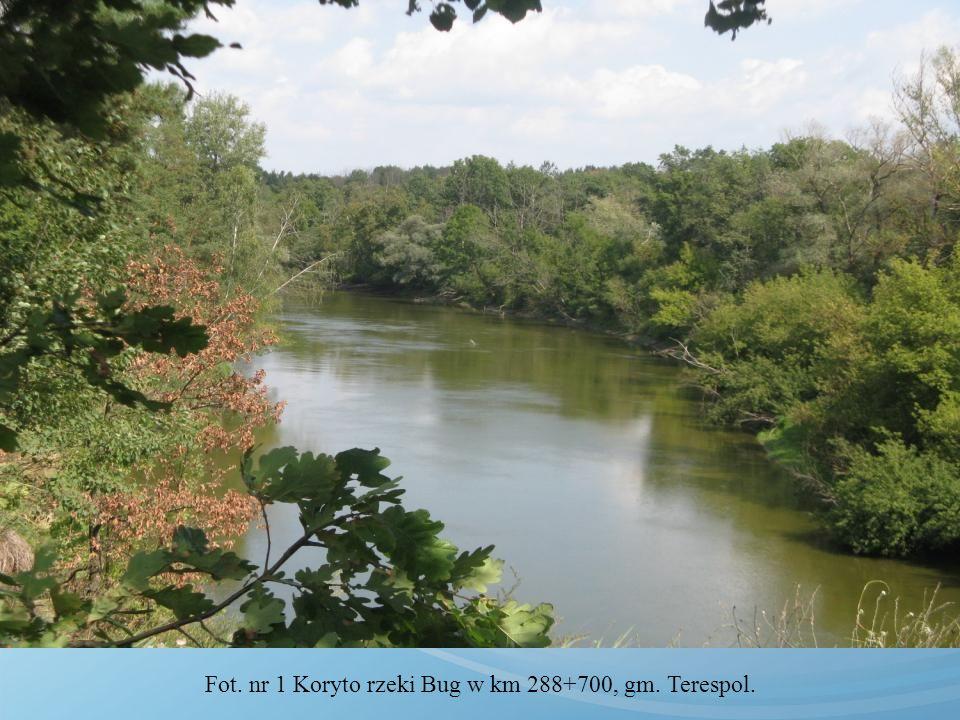 Fot. nr 1 Koryto rzeki Bug w km 288+700, gm. Terespol.