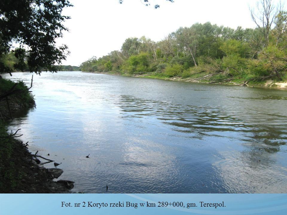 Fot. nr 2 Koryto rzeki Bug w km 289+000, gm. Terespol.