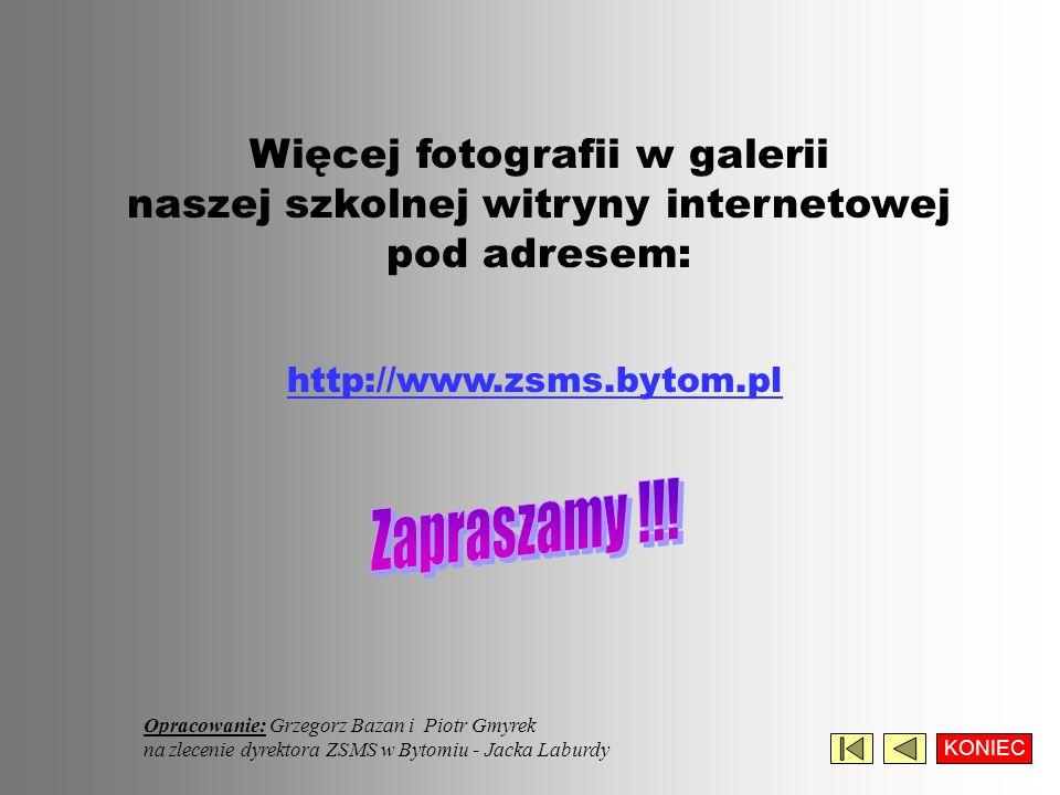 Więcej fotografii w galerii naszej szkolnej witryny internetowej pod adresem: