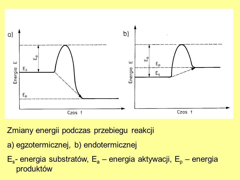 Zmiany energii podczas przebiegu reakcji