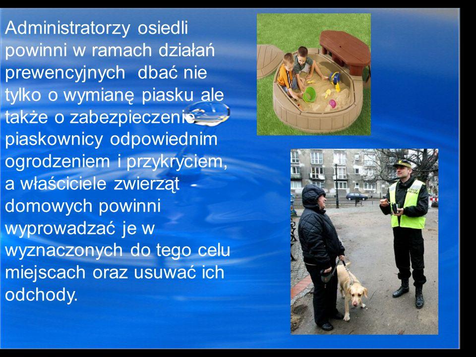 Administratorzy osiedli powinni w ramach działań prewencyjnych dbać nie tylko o wymianę piasku ale także o zabezpieczenie piaskownicy odpowiednim ogrodzeniem i przykryciem, a właściciele zwierząt domowych powinni wyprowadzać je w wyznaczonych do tego celu miejscach oraz usuwać ich odchody.