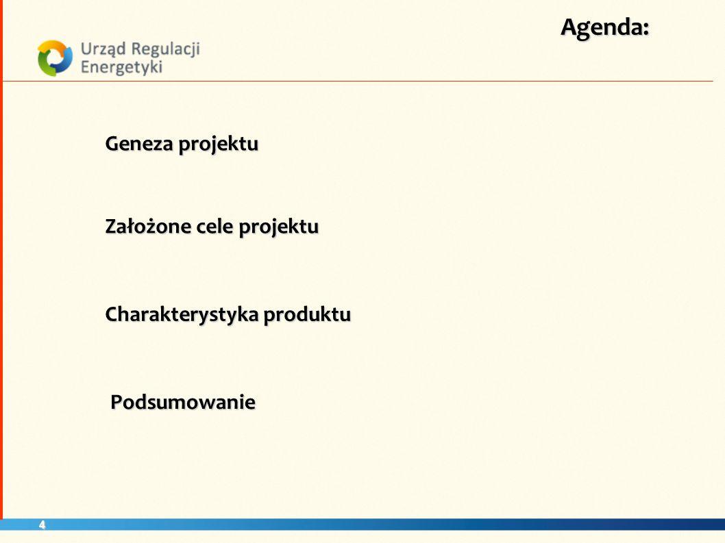 Agenda: Geneza projektu Założone cele projektu