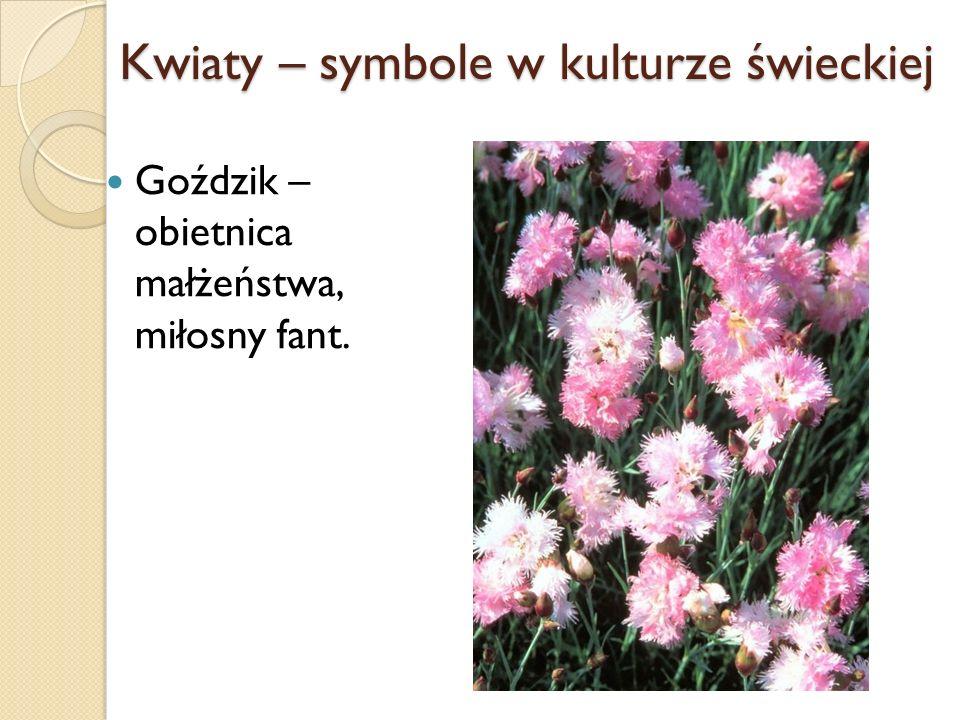 Kwiaty – symbole w kulturze świeckiej