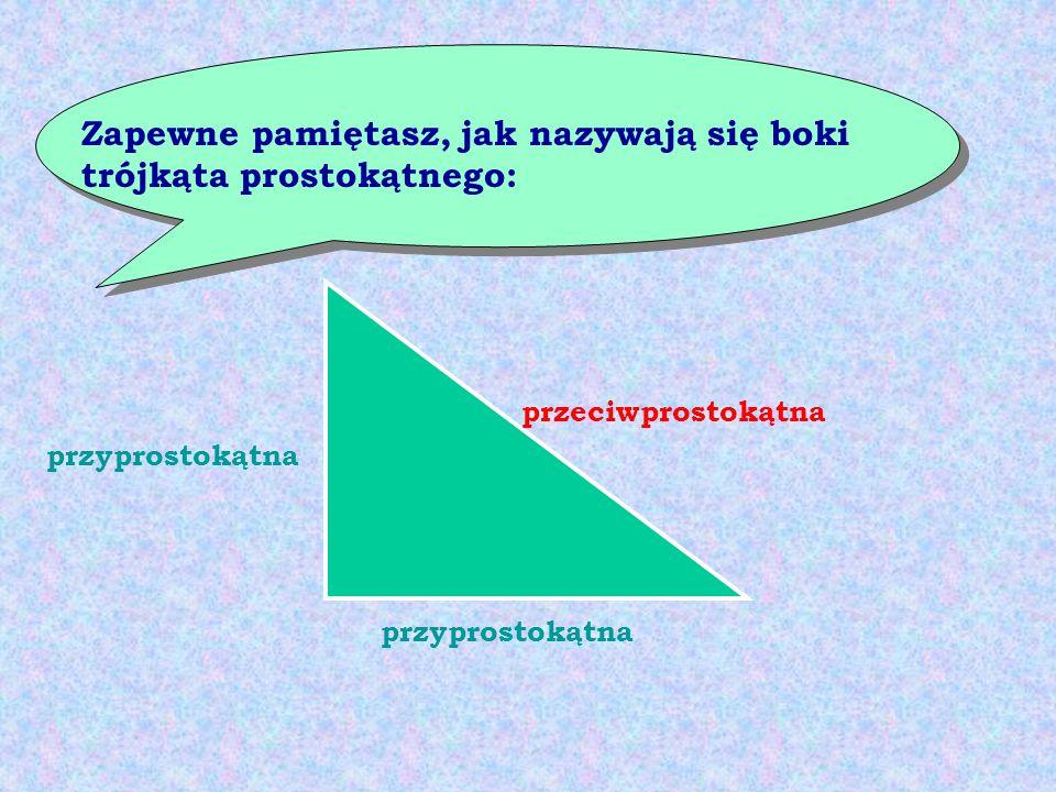 Zapewne pamiętasz, jak nazywają się boki trójkąta prostokątnego: