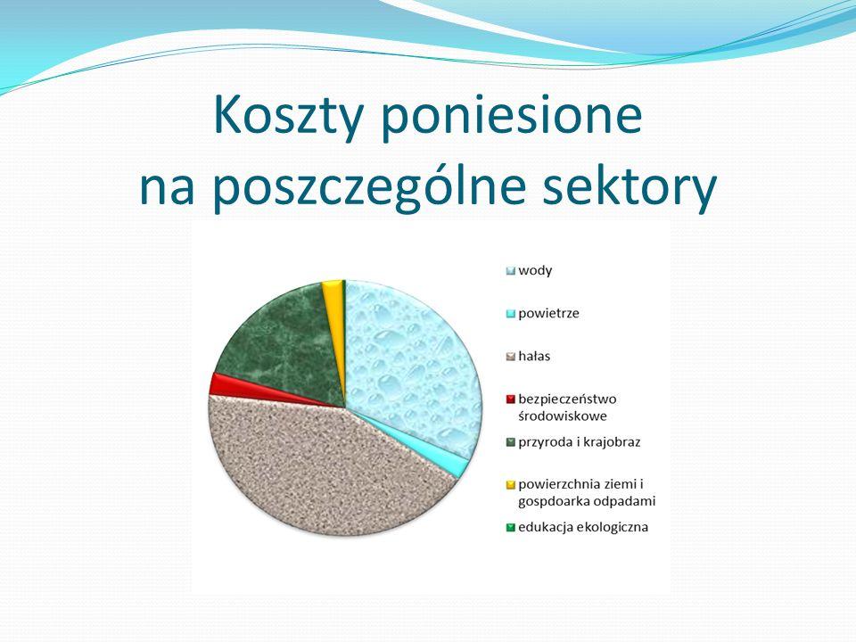 Koszty poniesione na poszczególne sektory
