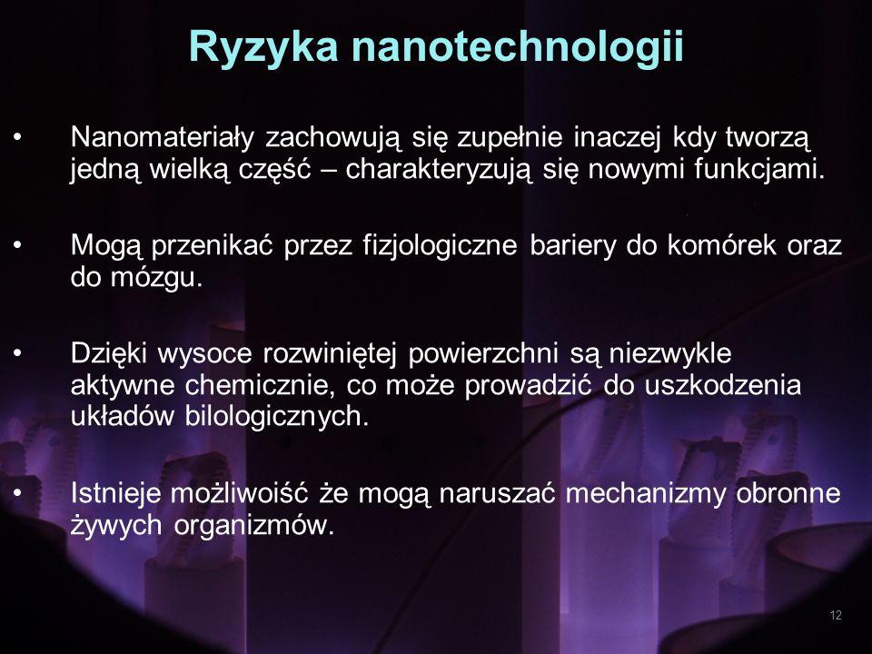 Ryzyka nanotechnologii