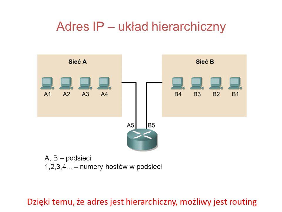 Adres IP – układ hierarchiczny