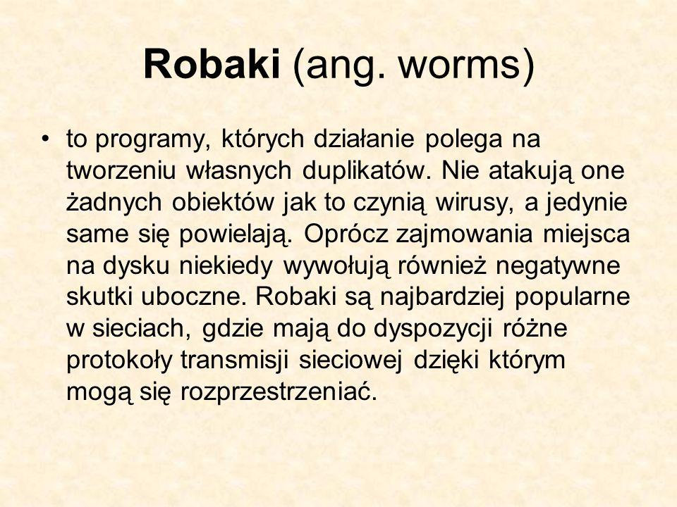 Robaki (ang. worms)