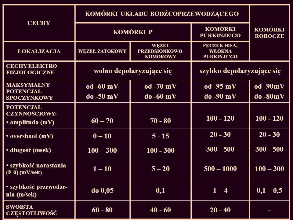 wolno depolaryzujące się szybko depolaryzujące się od -60 mV do -50 mV