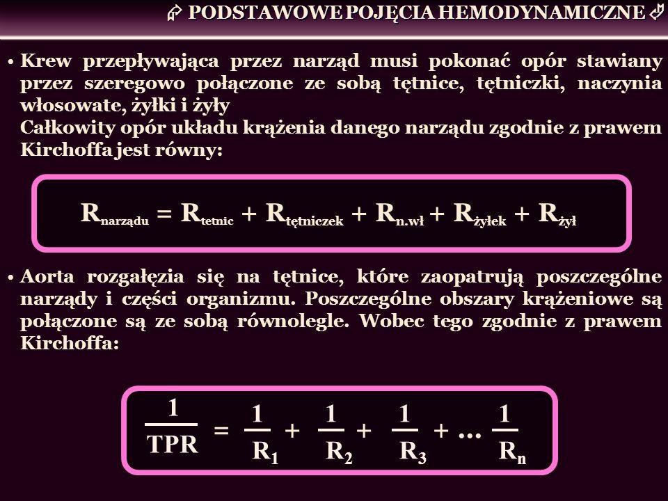 Rnarządu = Rtetnic + Rtętniczek + Rn.wł + Rżyłek + Rżył