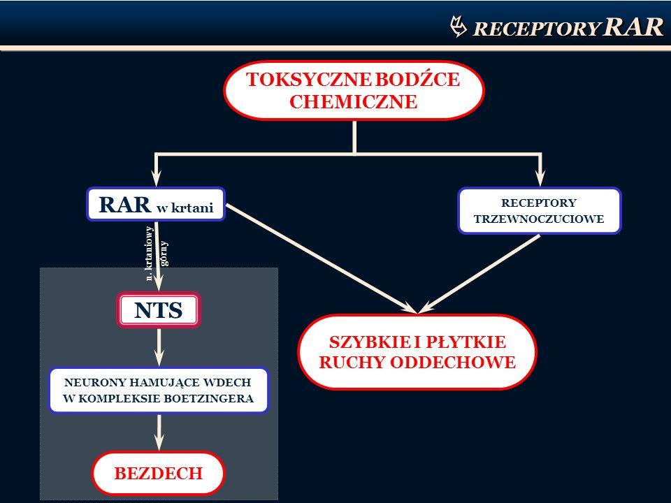  RECEPTORY RAR RAR w krtani NTS TOKSYCZNE BODŹCE CHEMICZNE