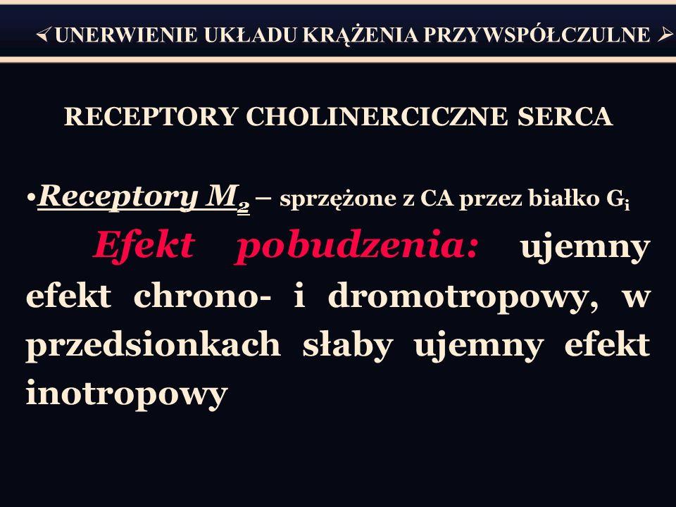 RECEPTORY CHOLINERCICZNE SERCA