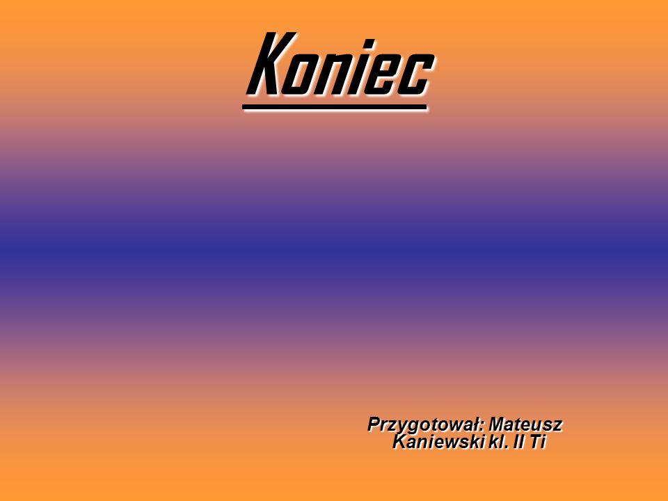 Koniec Przygotował: Mateusz Kaniewski kl. II Ti