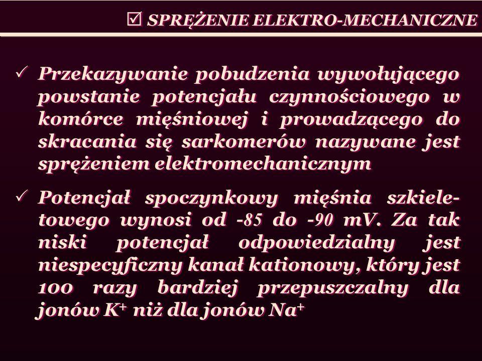  SPRĘŻENIE ELEKTRO-MECHANICZNE